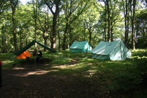 Bears wood scout campsite