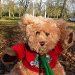 Introducing Bonington Bear